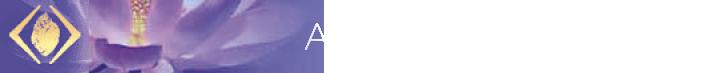 Anton Peter Neumann Logo